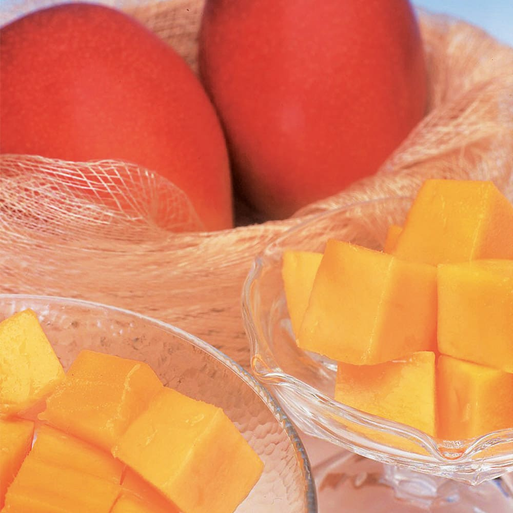宮崎西都産 「太陽のタマゴ」 (3Lサイズ×2玉) 【通常お届け】 フルーツ