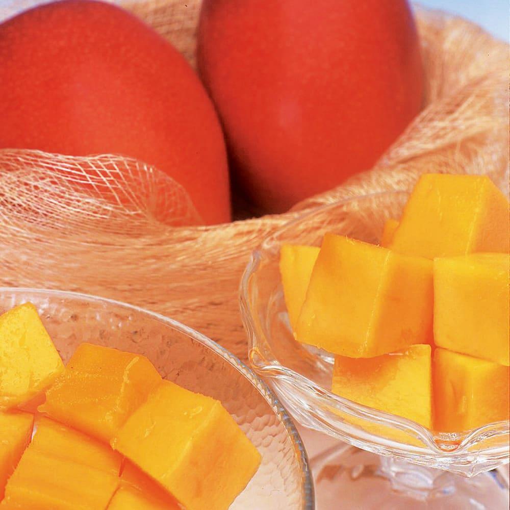宮崎西都産 完熟マンゴー (2Lサイズ×2玉) フルーツ