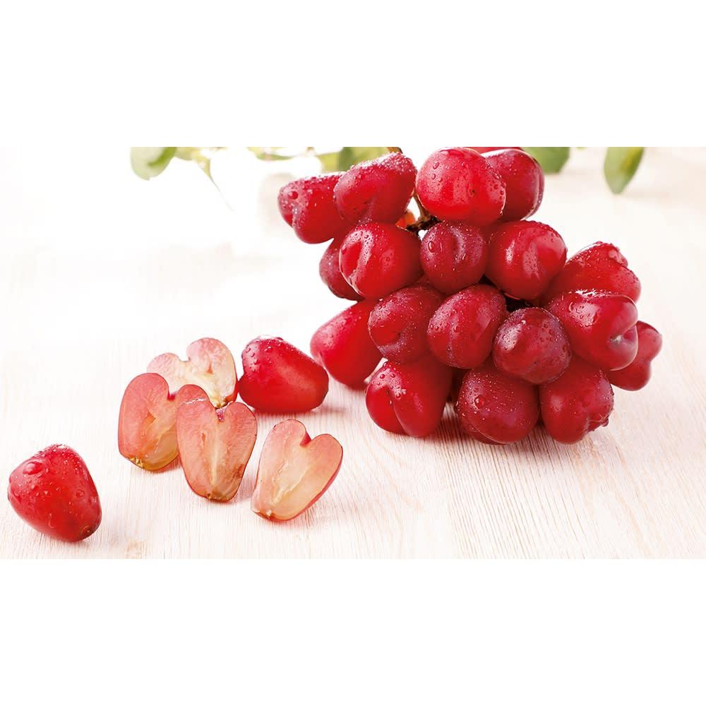 長野産 ぶどう 「マイハート」 (約1kg 2~3房) フルーツ