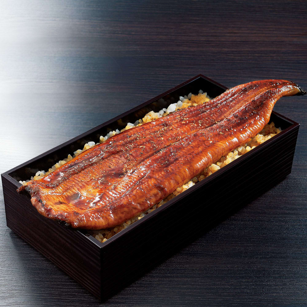 愛知・三河産 特選うなぎセット (190g以上×3尾) 【通常お届け】 魚加工品