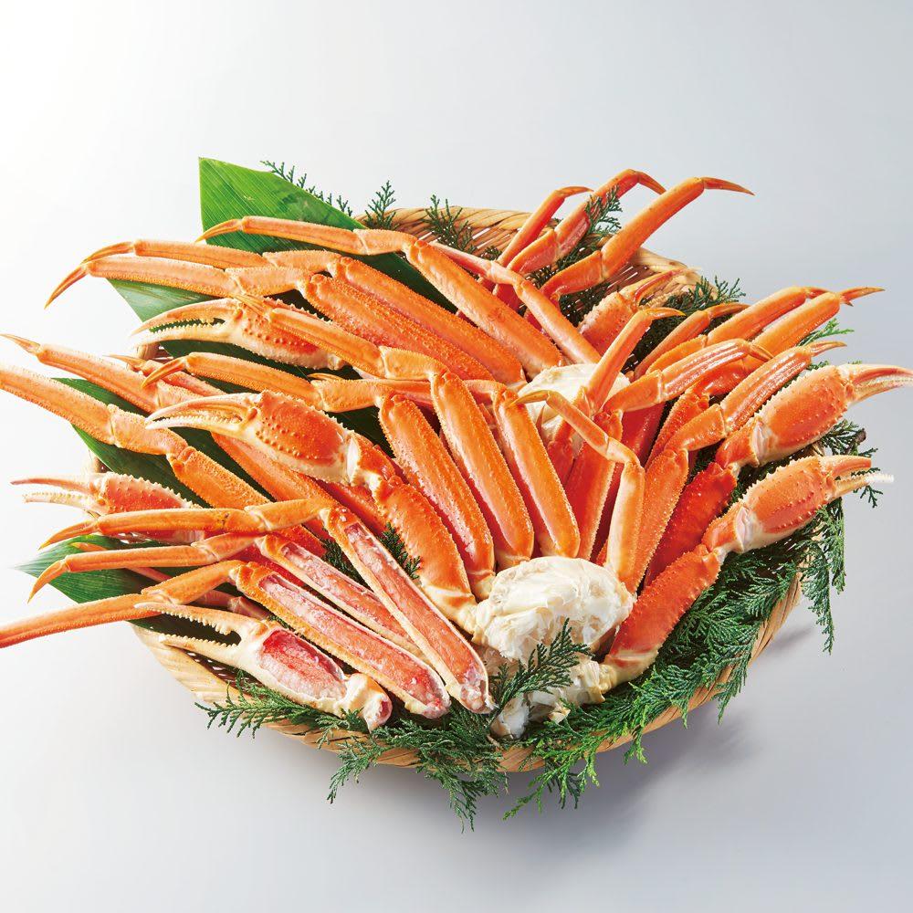ワケあり特大ズワイガニの脚3kg(5Lサイズ) 魚・海産生鮮品