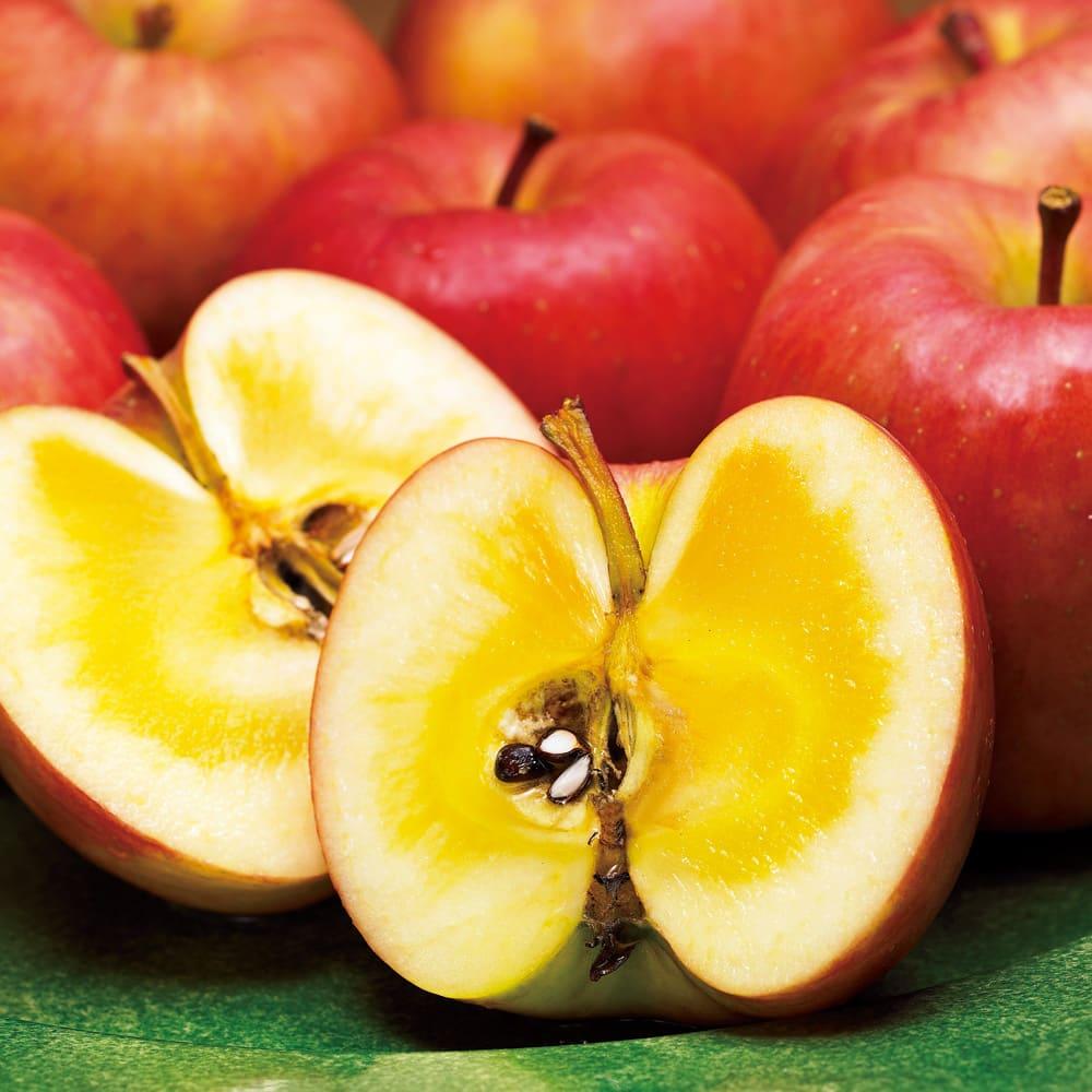 グルメ 食品 野菜 果物 フルーツ 青森産 りんご「こみつ」 (約2kg) FJ8321