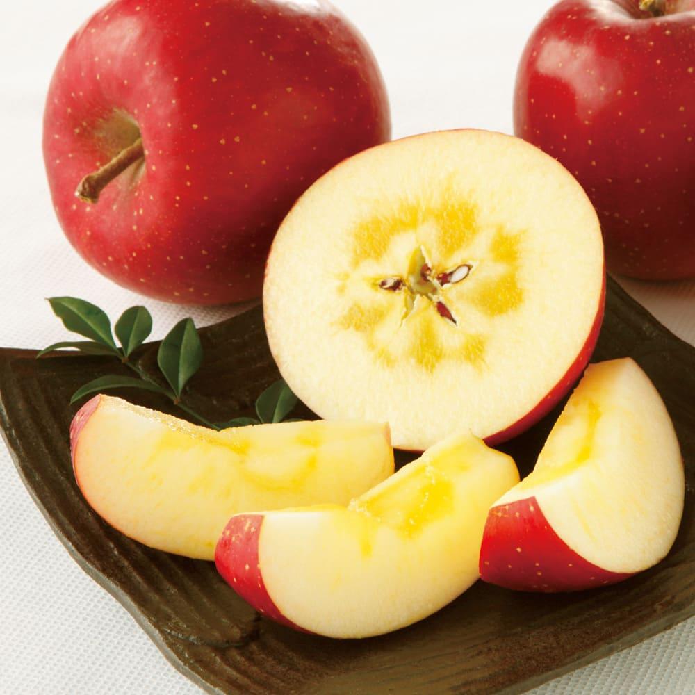 岩手・江刺産 サンふじりんご (約3kg) フルーツ