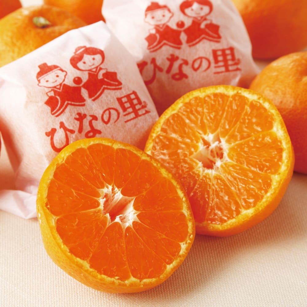 愛媛真穴産 越冬樹上完熟みかん ひなの里 (約2.5kg) フルーツ