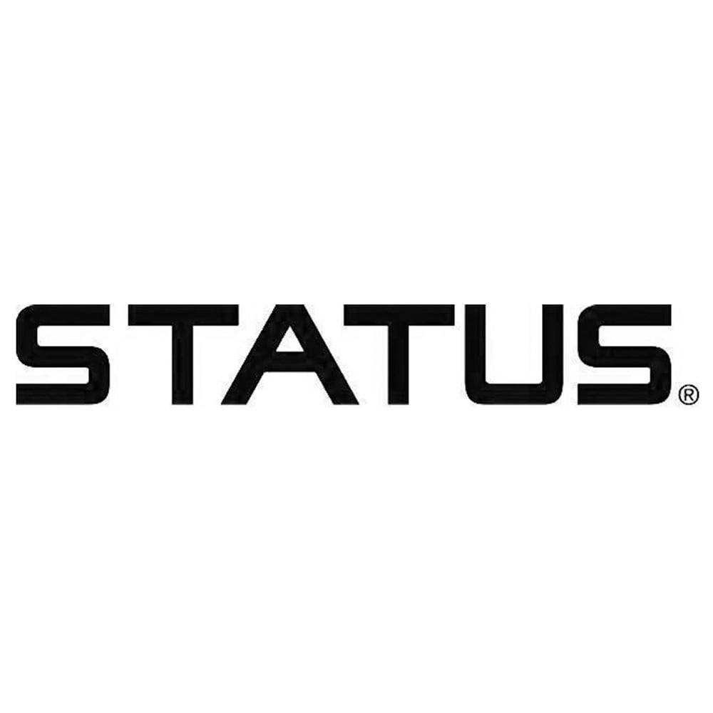 STATUS/スタートゥス バックストラップ パンプス(イタリア製)