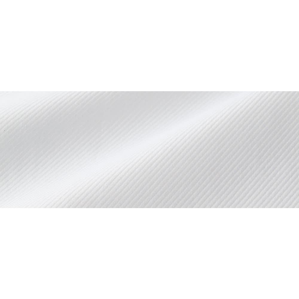 ソメロス社 コットンツイル バンドカラー シャツ 生地アップ