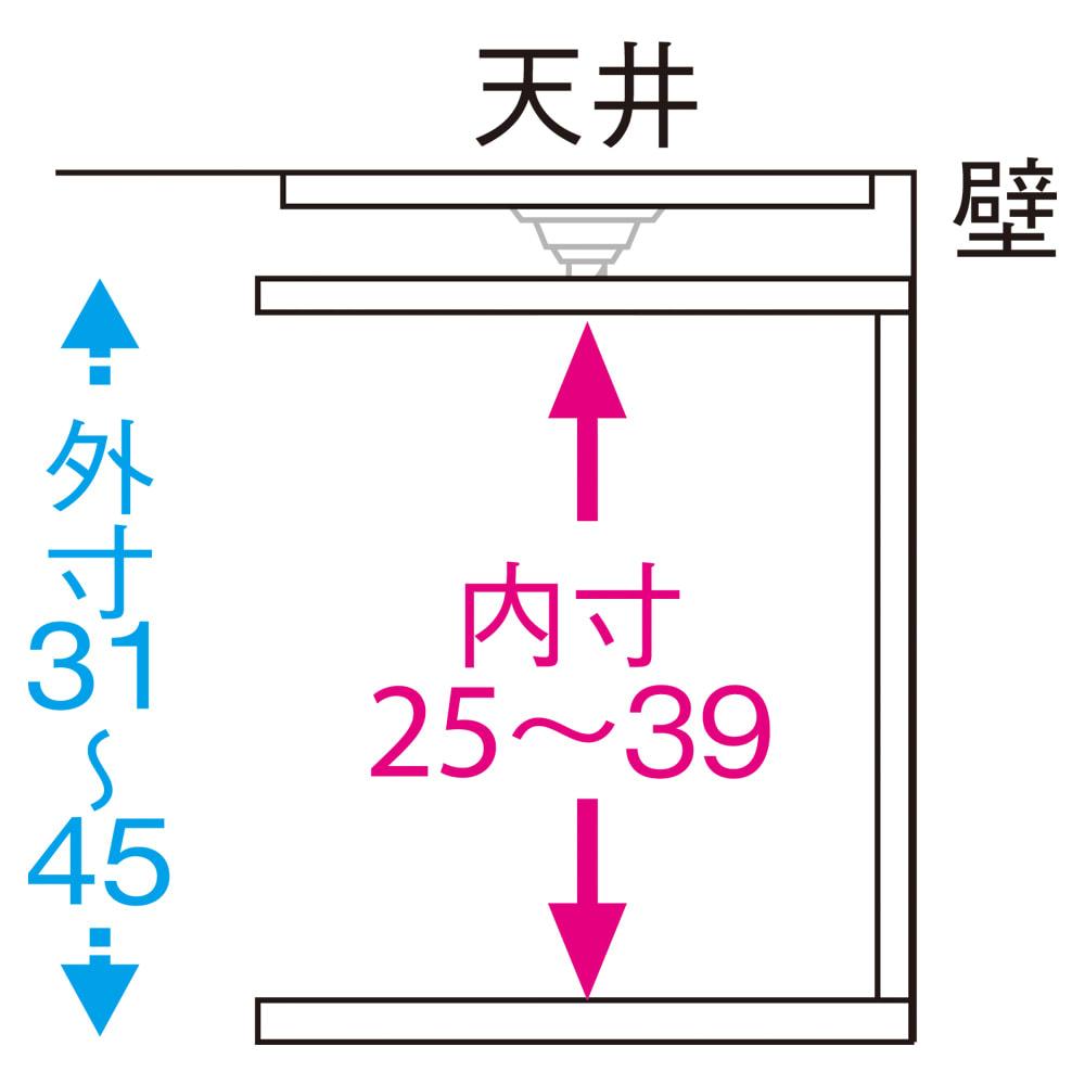 幅サイズオーダー 棚板がっちり書棚 上置き 幅31~80cm高さ31~80cm 天井高さ214~228cm
