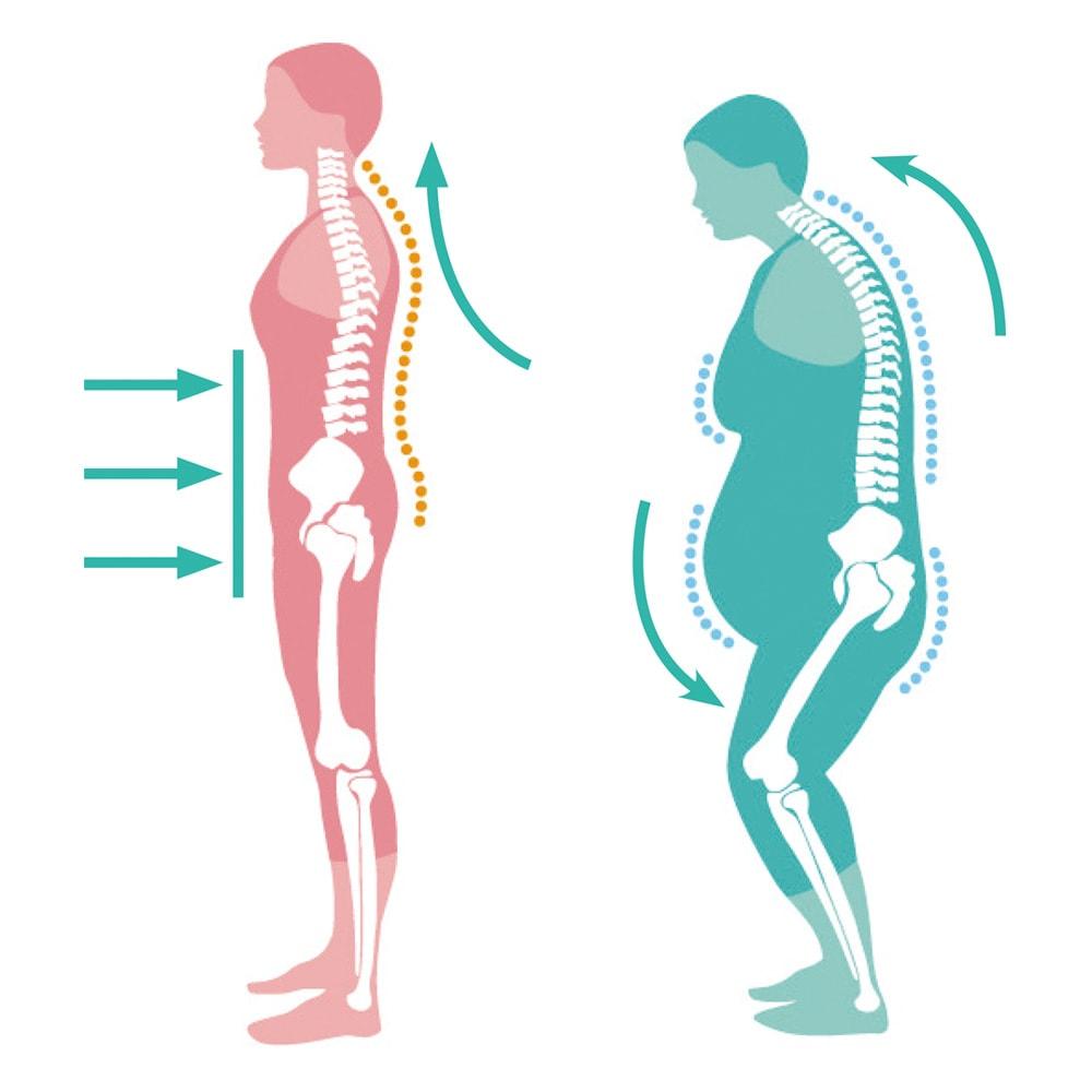 S帯(ボディ用) 1枚 体を伸ばすには前後の腹圧が必要。腹筋を上下に動かす腹筋運動より、前後に腹圧をかけて腹筋を刺激するほうが整った姿勢をキープできます。日常生活に毎日取り入れることで、S帯を外しているときも美しい姿勢を目指せ!