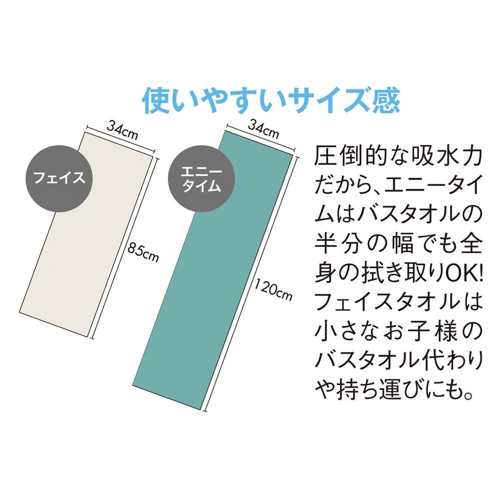 エアーかおる 今治消臭タオル エニータイム 同色2枚組 (34×120cm)