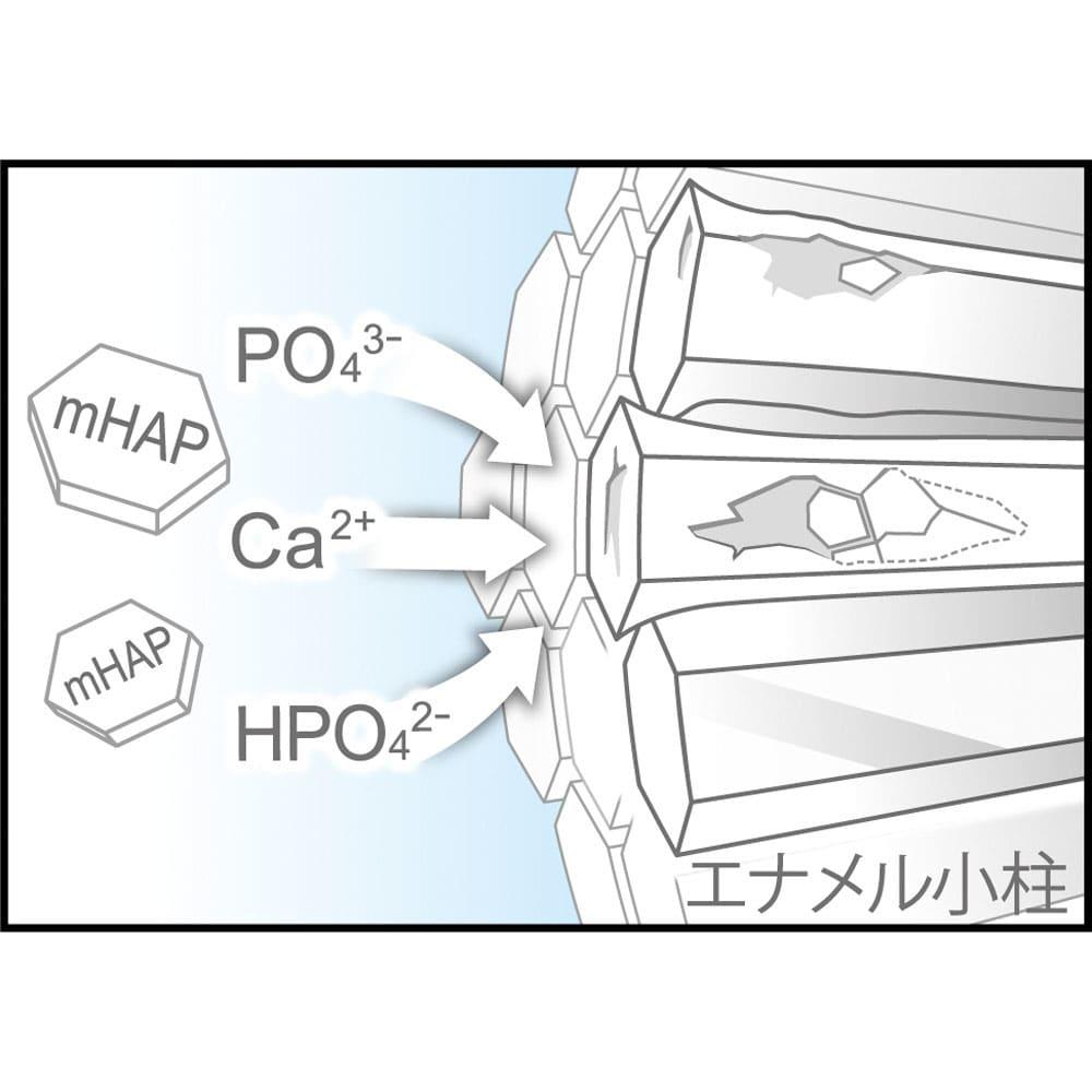 アパガードロイヤル 135g  (3)丈夫にする エナメル質から溶け出したミネラル成分を補給し、初期虫歯を再石灰化します。 ※イメージ図