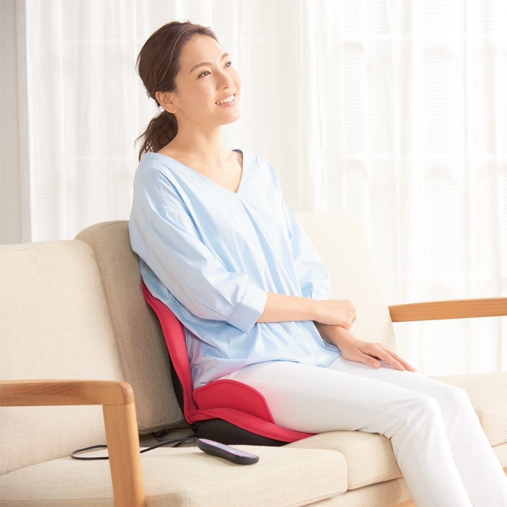美容 健康 ダイエット 健康器具 医療用品 健康グッズ 芦屋美整体 骨盤スリムスタイリーエアー M82104