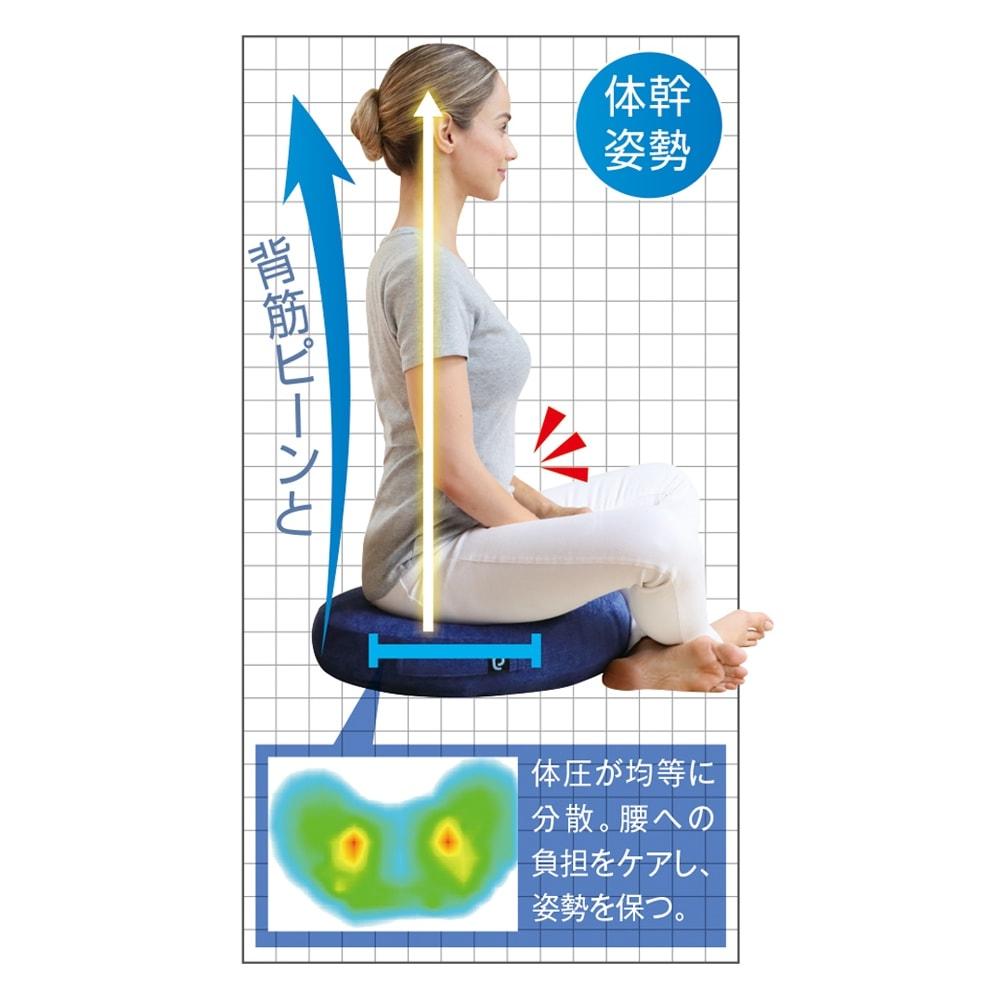 ジムテリア シークレットバランス ワイド│バランストレーニング・姿勢サポートクッション