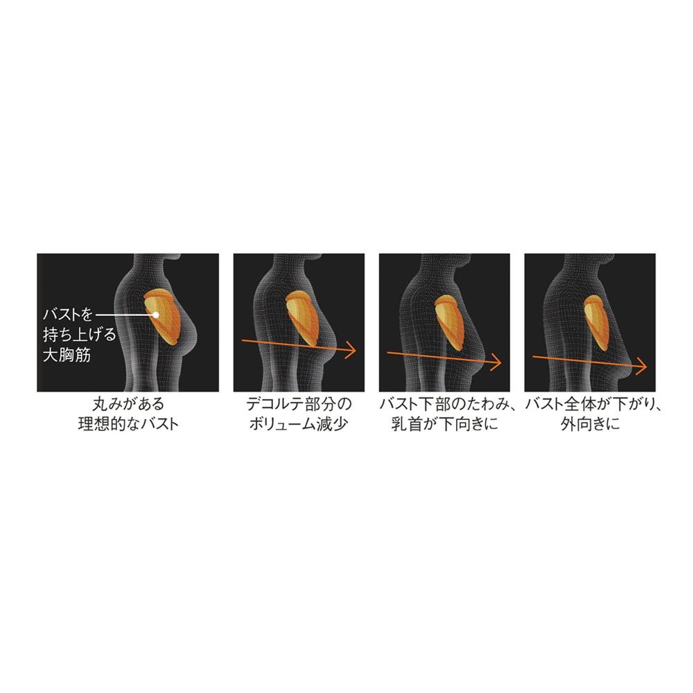 SIXPAD/シックスパッド Chest Fit(チェストフィット) 50周年特別セット 加齢やケア不足による筋肉の衰え・減少などにより変化するバストライン ※イメージ