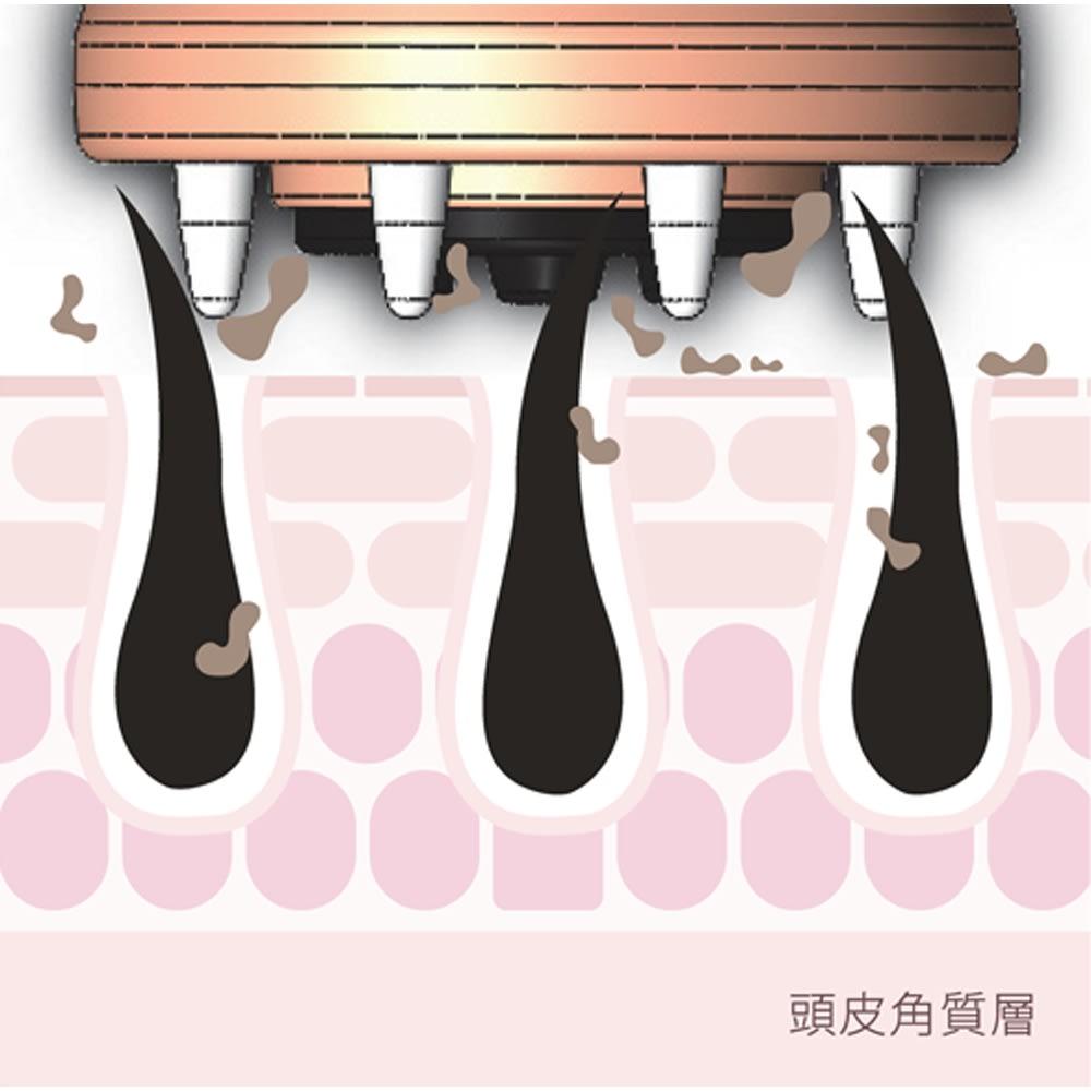 EBiS/エビス 頭皮美容機器エステッド ※イメージ[クレンジングモード]■イオン■バイブレーション 指だけでは落としにくい毛穴汚れをクレンジングし、すっきり清潔な頭皮へ整えます。