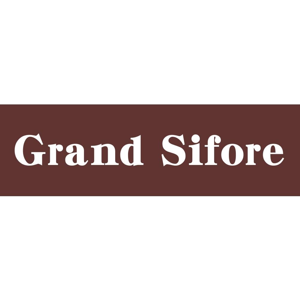 Grand Sifore/グランシフォレ 水牛 サークル イヤリング・ピアス