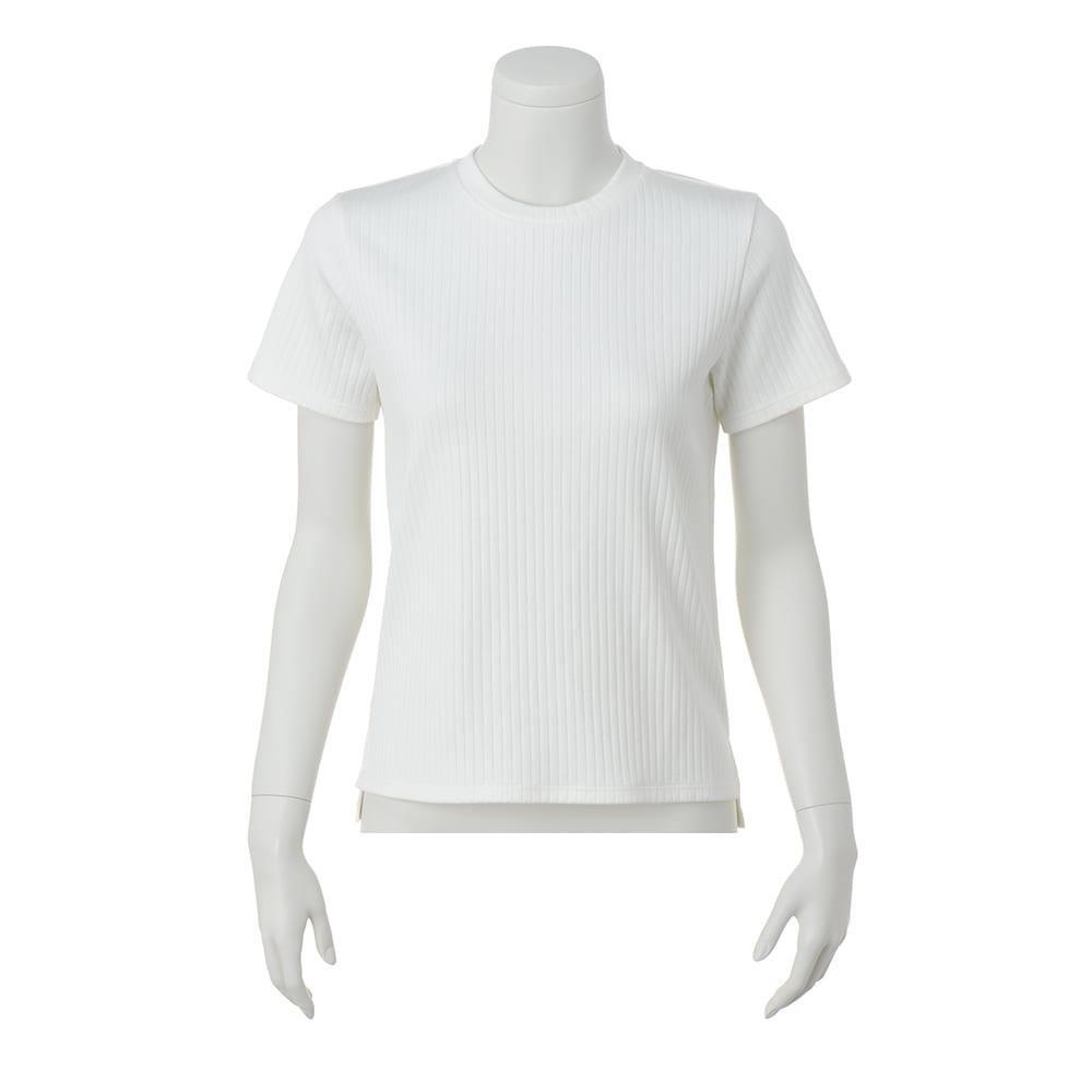 スビンギザコットン ワイドリブ 半袖 Tシャツ (イ)オフホワイト