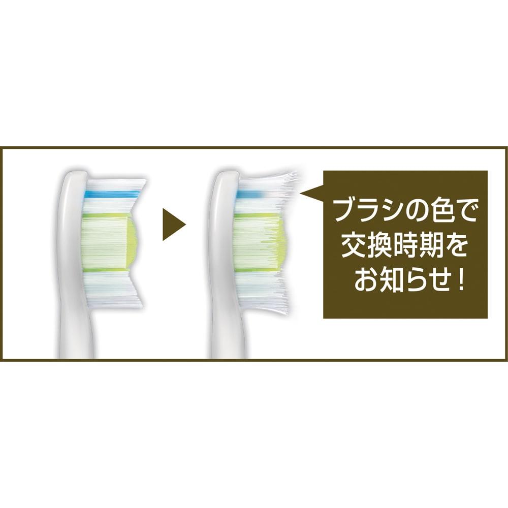 インターケア 替えブラシ 3本組 歯垢除去力を維持するために替えブラシは3ヶ月毎に!
