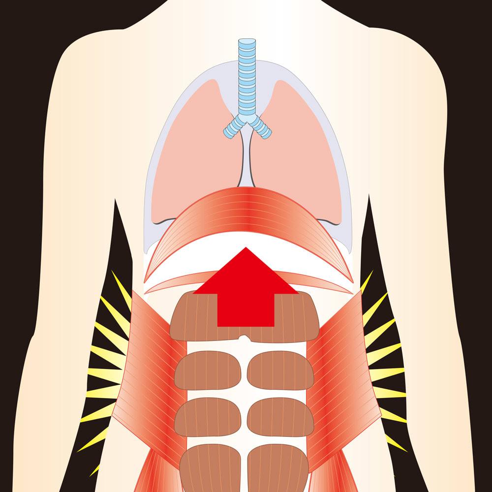 腹式呼吸 エクサロングピロピロ 4本組 たった1日10吹(目安)の長い腹式呼吸!簡単・手軽だから毎日続く! 自然とお腹に力が入り、エクササイズに。