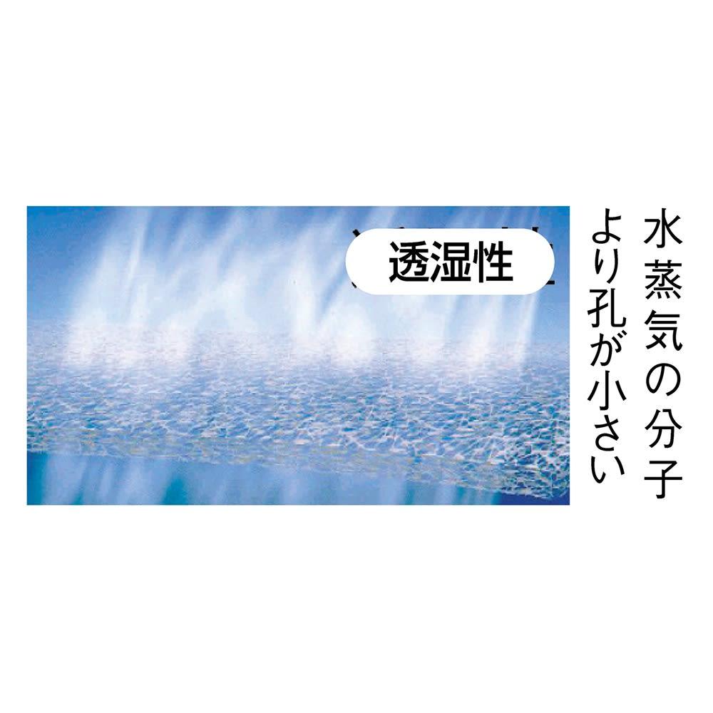 TOPDRY/トップドライ ゴアテックススリッポン