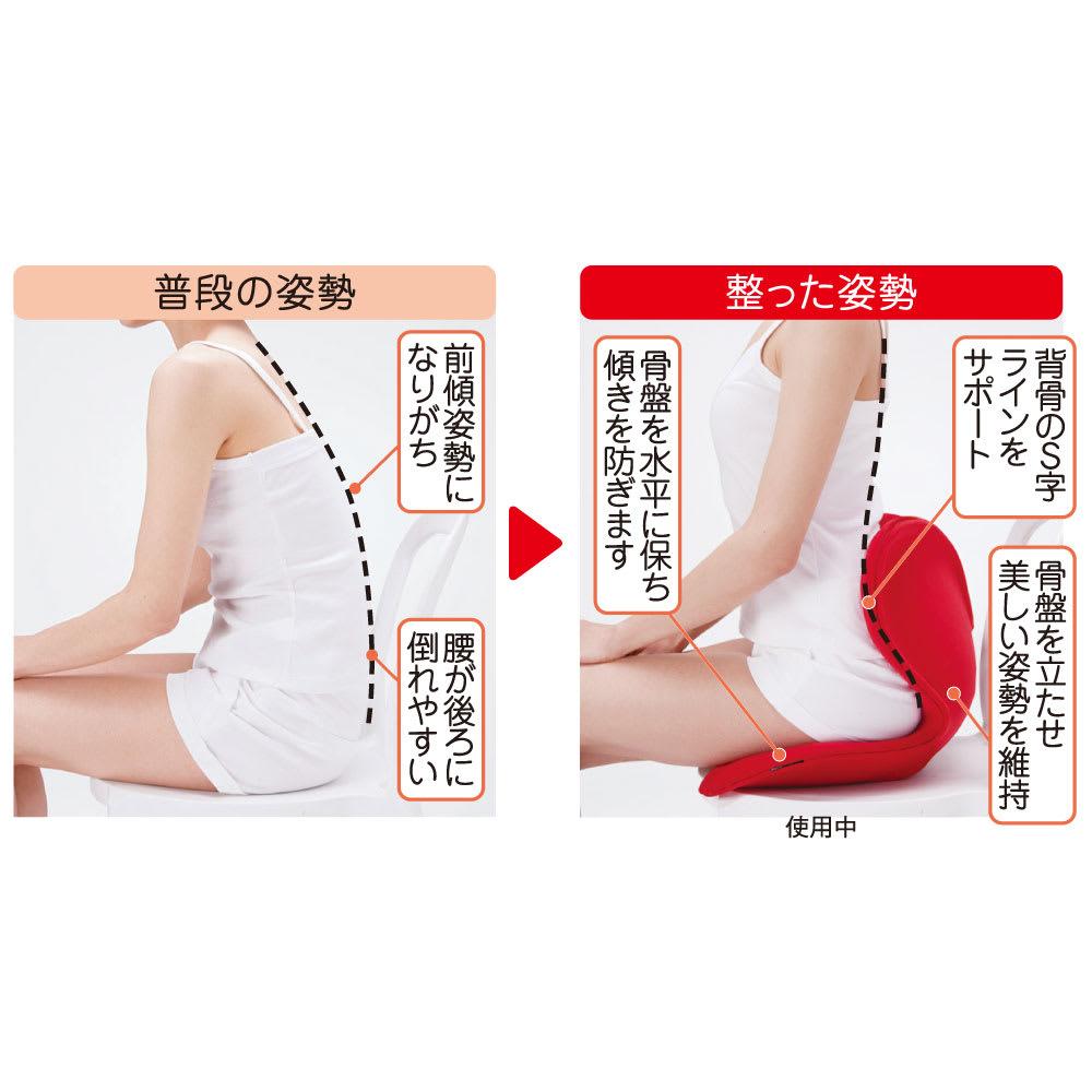 ボディメイクシート スタイル 整った姿勢は腰や肩の負担を軽減します