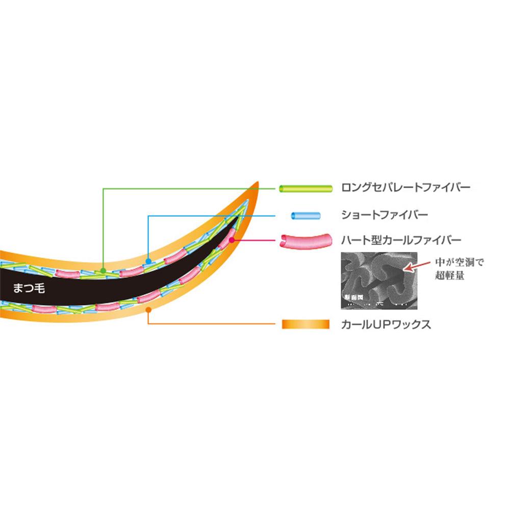 """MICHIKO.LIFE/ミチコドットライフ フォルトリスマスカラ (7g)2本組 長さの異なる2種のファイバーによって理想のロングセパレートに。またハート型カールファイバーがまつ毛のカールに沿ってしっかり密着し上向きで""""魅せるまつ毛""""を演出。さらにカールアップワックスが綺麗なカールを長時間キープします。"""