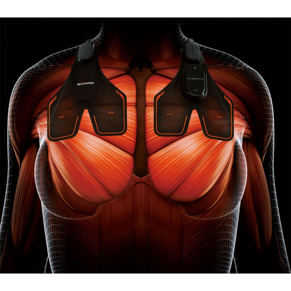【送料無料】SIXPAD/シックスパッド Chest Fit(チェストフィット) 【point 1 大胸筋をダイレクトに刺激】 大胸筋の上部に装着。身体の中心から左右3cmの位置に左右対称に配置した電極から、大胸筋にピンポイントでアプローチします。
