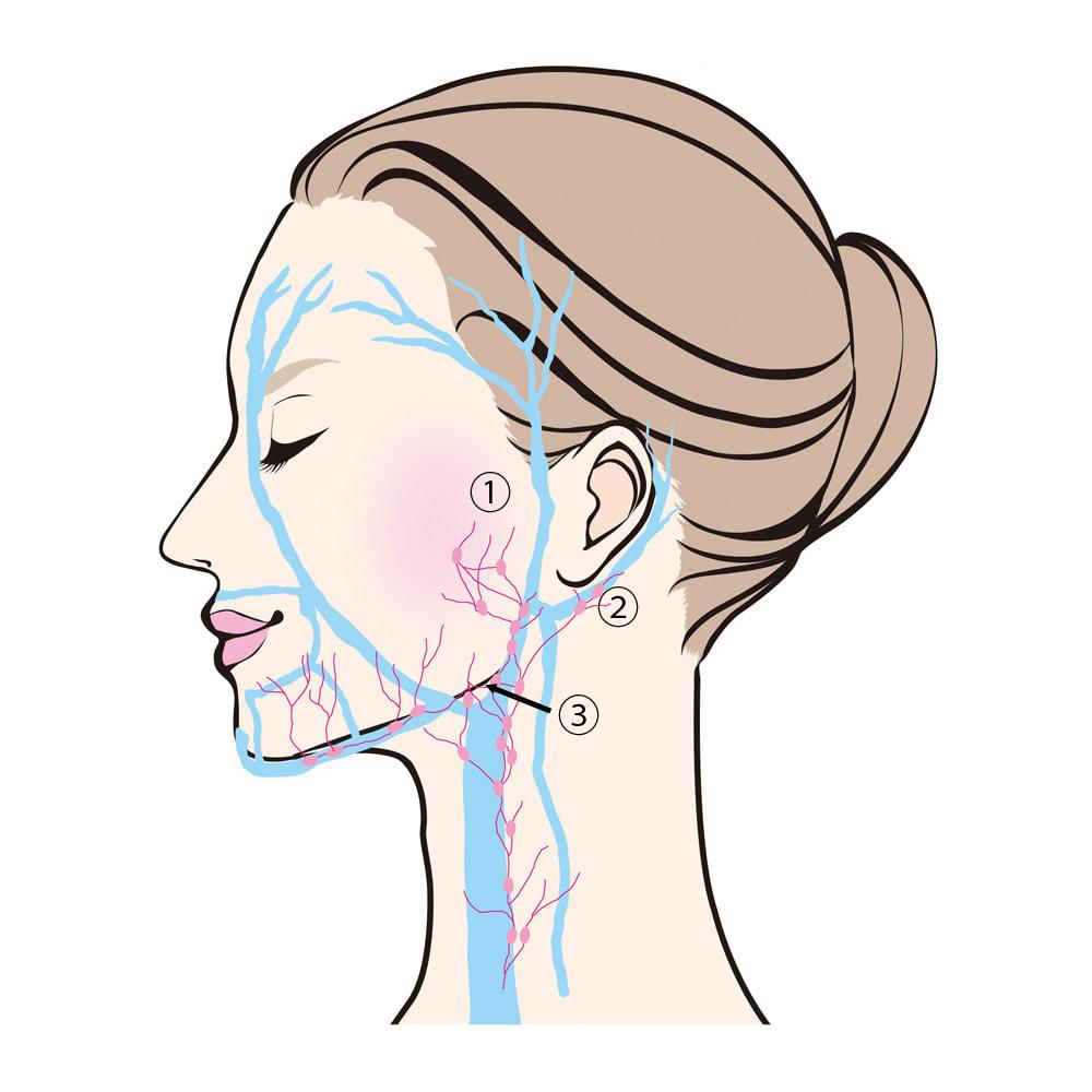 TSUDA SETSUKO T'sマッサージウォッシュジェル 100g 3ポイントへ向けて流れを集めます。(1)耳珠(耳の穴の前)(2)耳垂(耳たぶ)(3)マンディブラーノッチ(あごの骨の角から1cmほど内側にある骨のくぼみ)