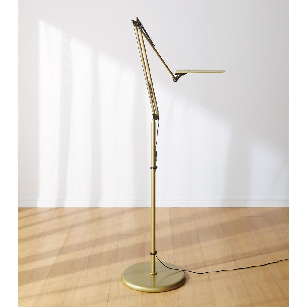 フロア型読書灯 LEDエグザーム DIVA (ア)シャンパンゴールド