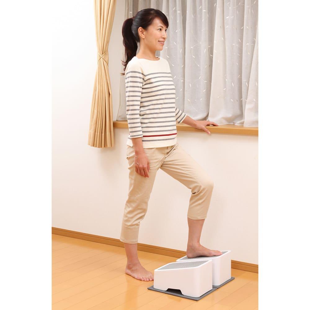 AEROLIFE/エアロライフ ツインステップス 傾斜によりつま先が上がった状態のまま昇降運動を行うと、日常生活では鍛えにくい、すねの筋肉(前脛骨筋)をトレーニングできます。