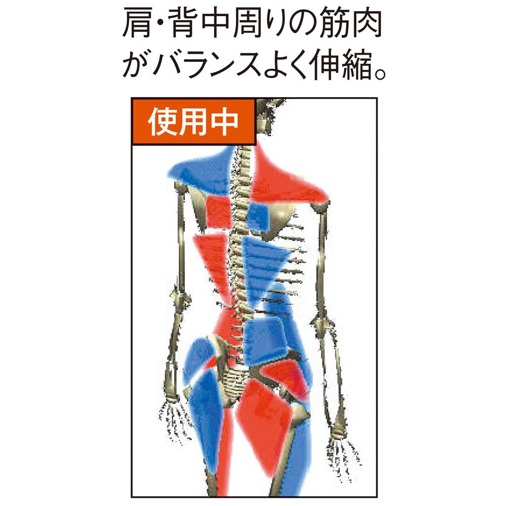 肩甲骨ストレッチ アイズポールプロ 使用中 ※青が縮んでいる筋肉、赤が伸びている筋肉 ※メーカー調べ(n=3)2016年1月12日 ※B.C Lab社製ボディコンシェルジュにて測定。 ※使用中の一時的効果です。 ※個人差があります。 ※シリーズ品、ai'spoleで測定。