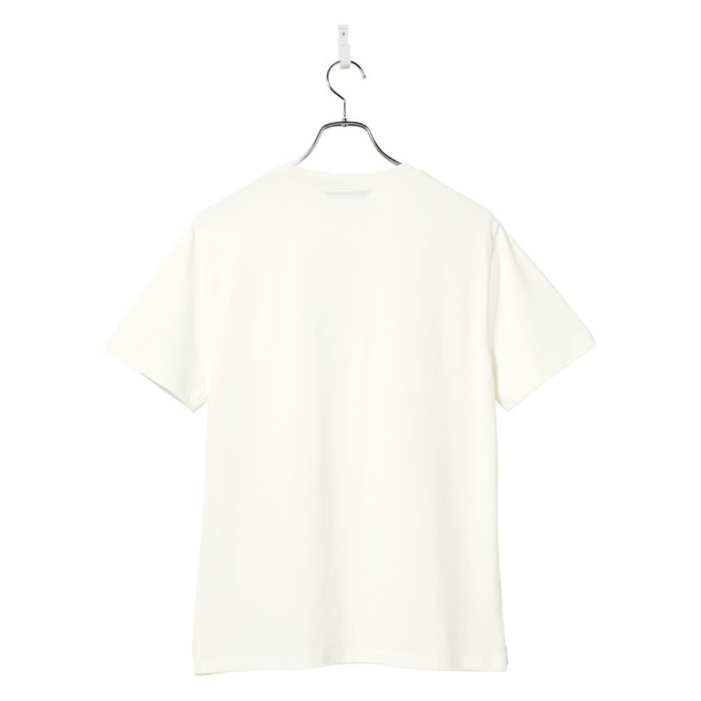 前身地柄ニット切替Tシャツ Back Style