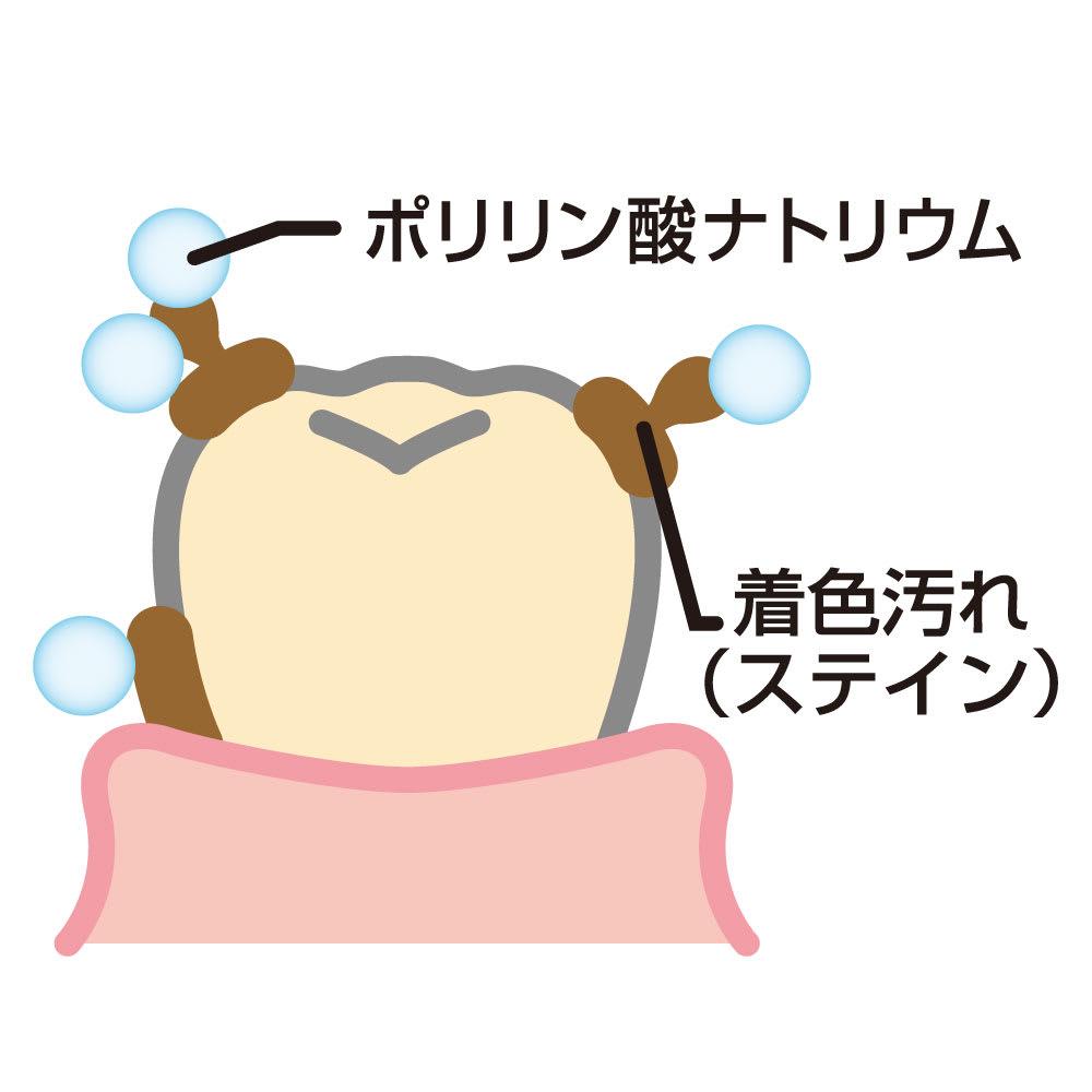ビクトリアローズ ホワイトローズ ティースジェル(医薬部外品) 60g 【ホワイトニングのメカニズム】ポリリン酸ナトリウムは歯面に付着したステインを歯から剥がして、歯の表面をきれいにします。