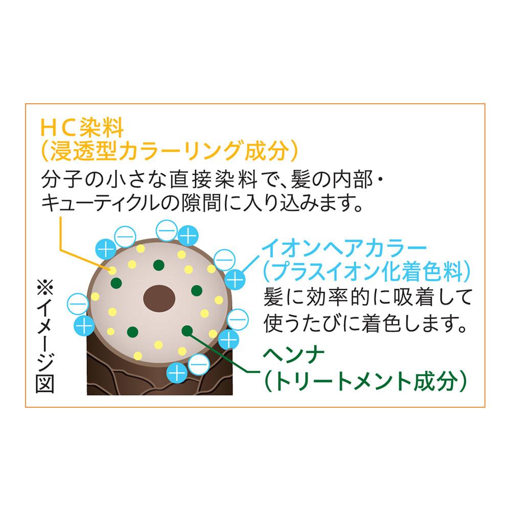 Motto ボタニカラー シャンプー(ヘンナ配合) 詰替用 500ml