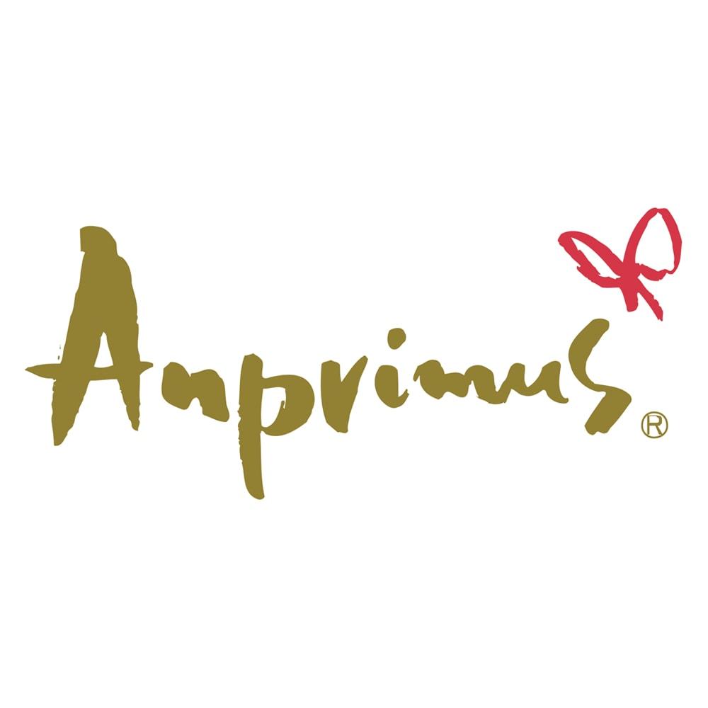 アンプリームス(R) 茶の実ノンワイヤブラタンク 下着作り20年のアンドールが立ち上げたオリジナルブランド「アンプリームス」。