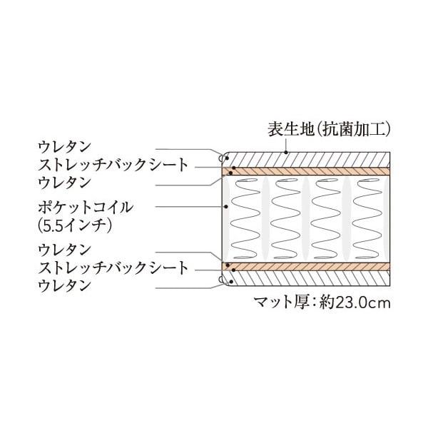Simmons シモンズ フラット縦開きガス圧収納ベッド 5.5インチ レギュラーマットレス(RG) マット断面図