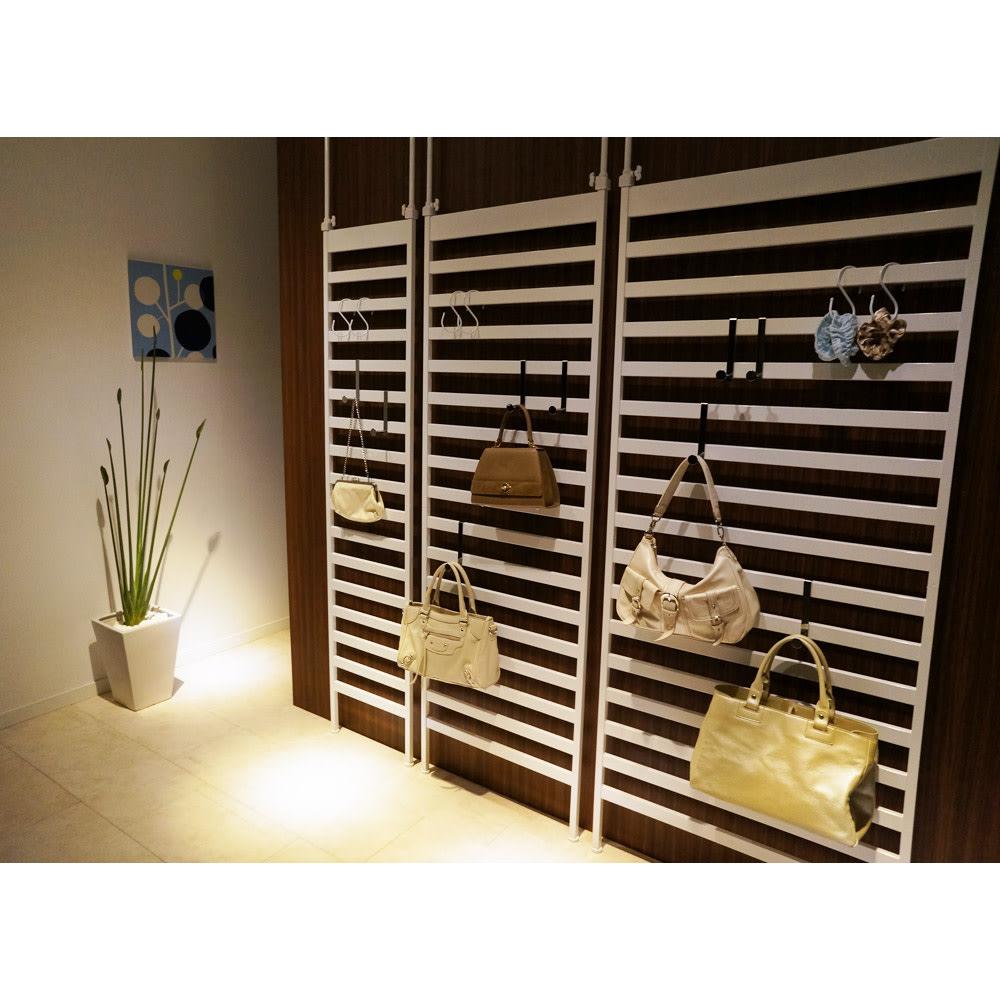 天井突っ張り壁面ディスプレイハンガーラック 幅60cm 棚付き (イ)ホワイト色見本 ※写真は左から幅40・幅60・幅75cmの棚なしタイプです。