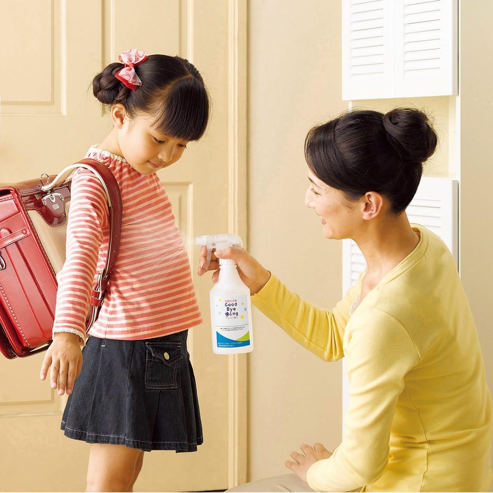 「グッバイ菌グ」 4L本体のみ 【業務用除菌剤】 「帰宅したらスグひと噴き!」が新しい衛生習慣です。