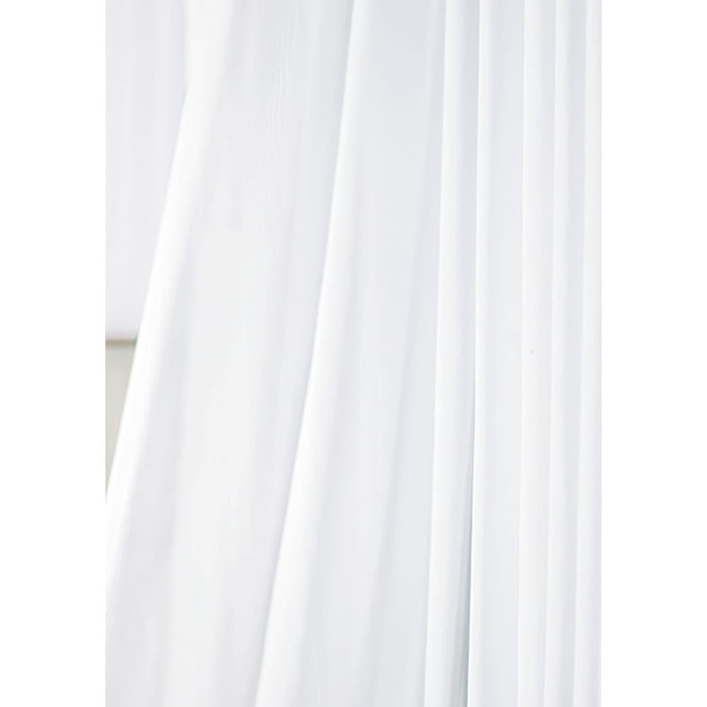 多目的洗剤 アミロンプロ(ホワイトラベル) 2Lセット (レースのカーテン)洗濯機で真っ白に!