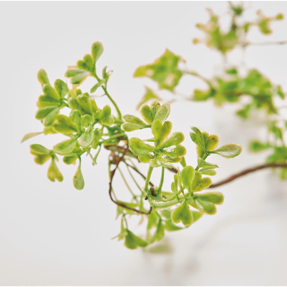 グリーンアレンジメントライト Lサイズ (イ)リーフ 愛らしい実をモチーフにした(ア)ベリーと新芽をイメージした(イ)リーフ。どちらも本物のようにリアル。