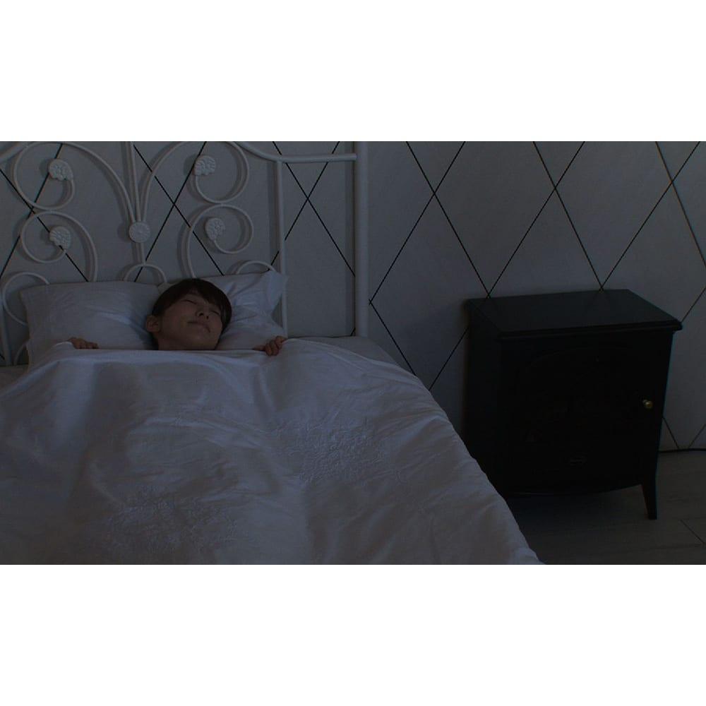 Dimplex/ディンプレックス 電気暖炉ファンヒーター リッツ2 30分刻みでオフタイマー設定が可能!眠りにつくまでのひとときにオススメです。消し忘れ防止にも。
