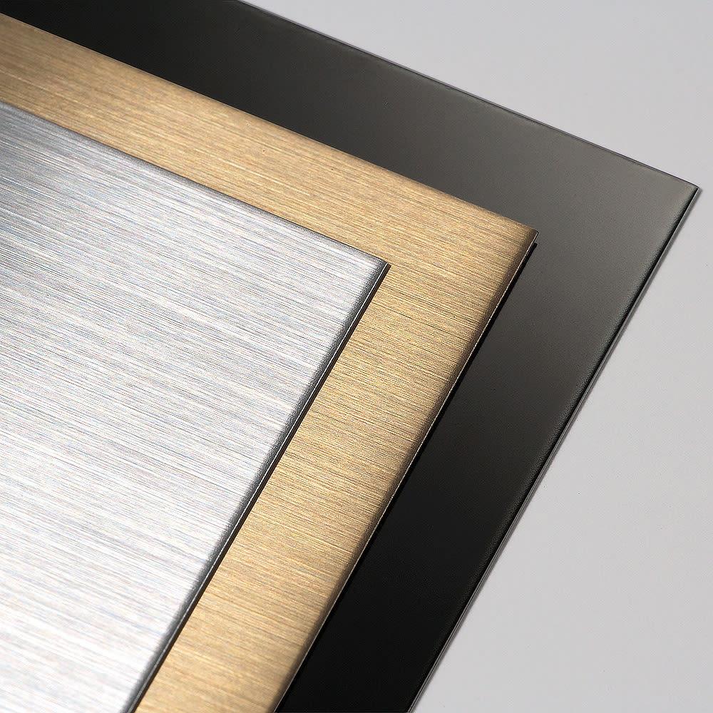 ステンレスプレート表札 戸建タイプ(21×9.5cm)