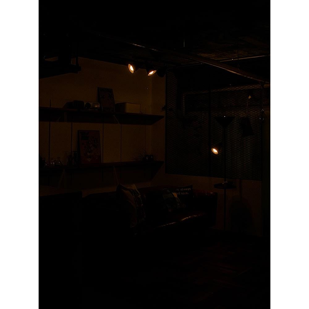 トゥルーロリモート 1灯ペンダントライトA