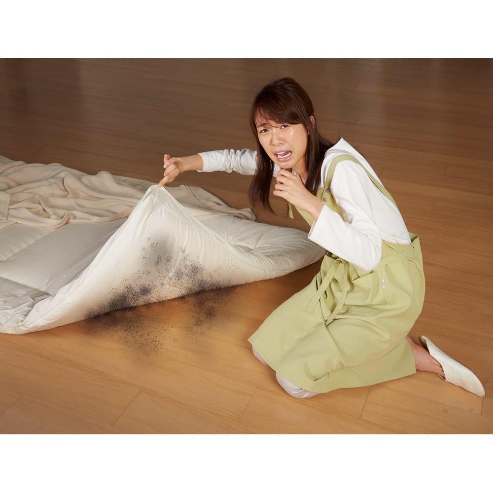 セミシングル (調湿くん(R)MAX「除湿マット」 アレルGカバー付き) 丸洗いできない敷布団やマットレスは事前のケアが大切!こうなる前に対策しましょう。
