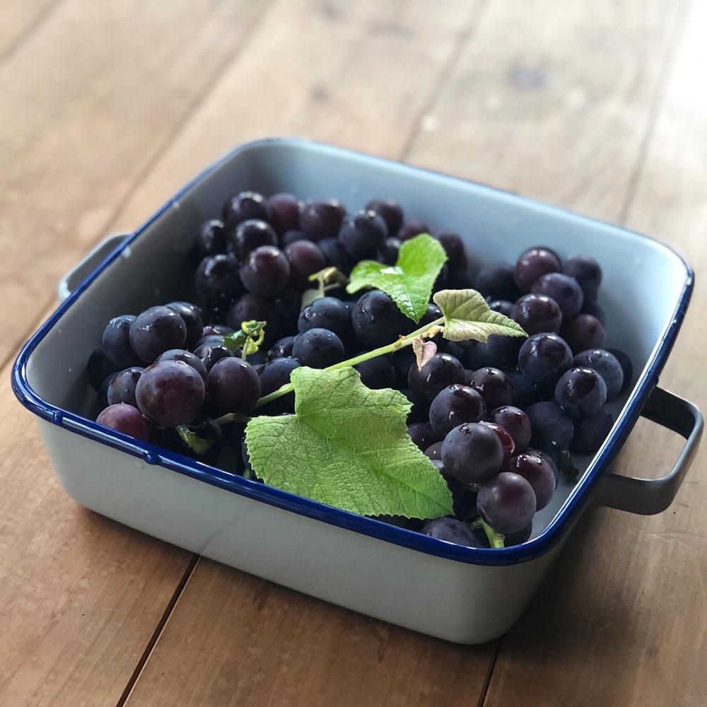 調理もできるホーロー容器 ホーローオーブンディッシュ1個 スクエア 1.8L 果物を入れても。