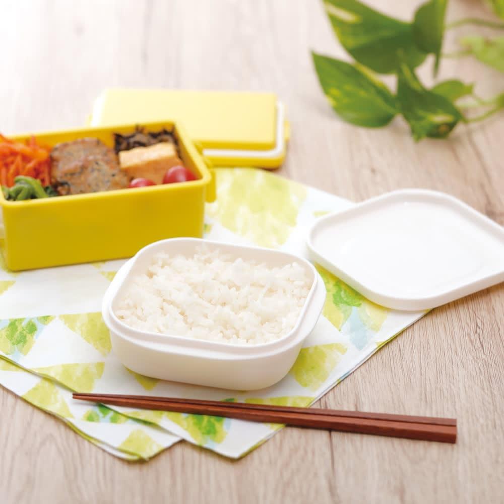 炊き立てご飯を美味しく冷凍!マーナ 極 冷凍ごはん容器 2個組 そのままお弁当にも。
