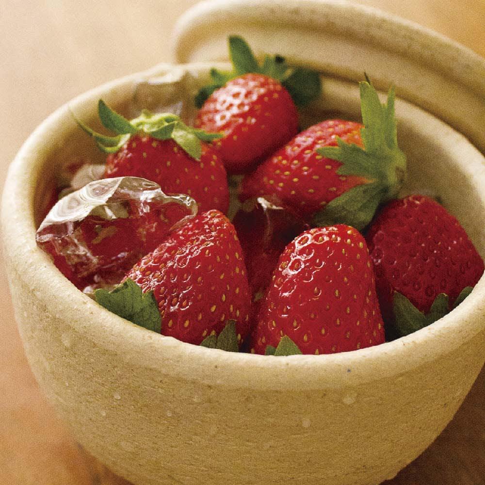 伊賀焼長谷園 陶器のおひつ陶珍 2合用 冷やしフルーツ