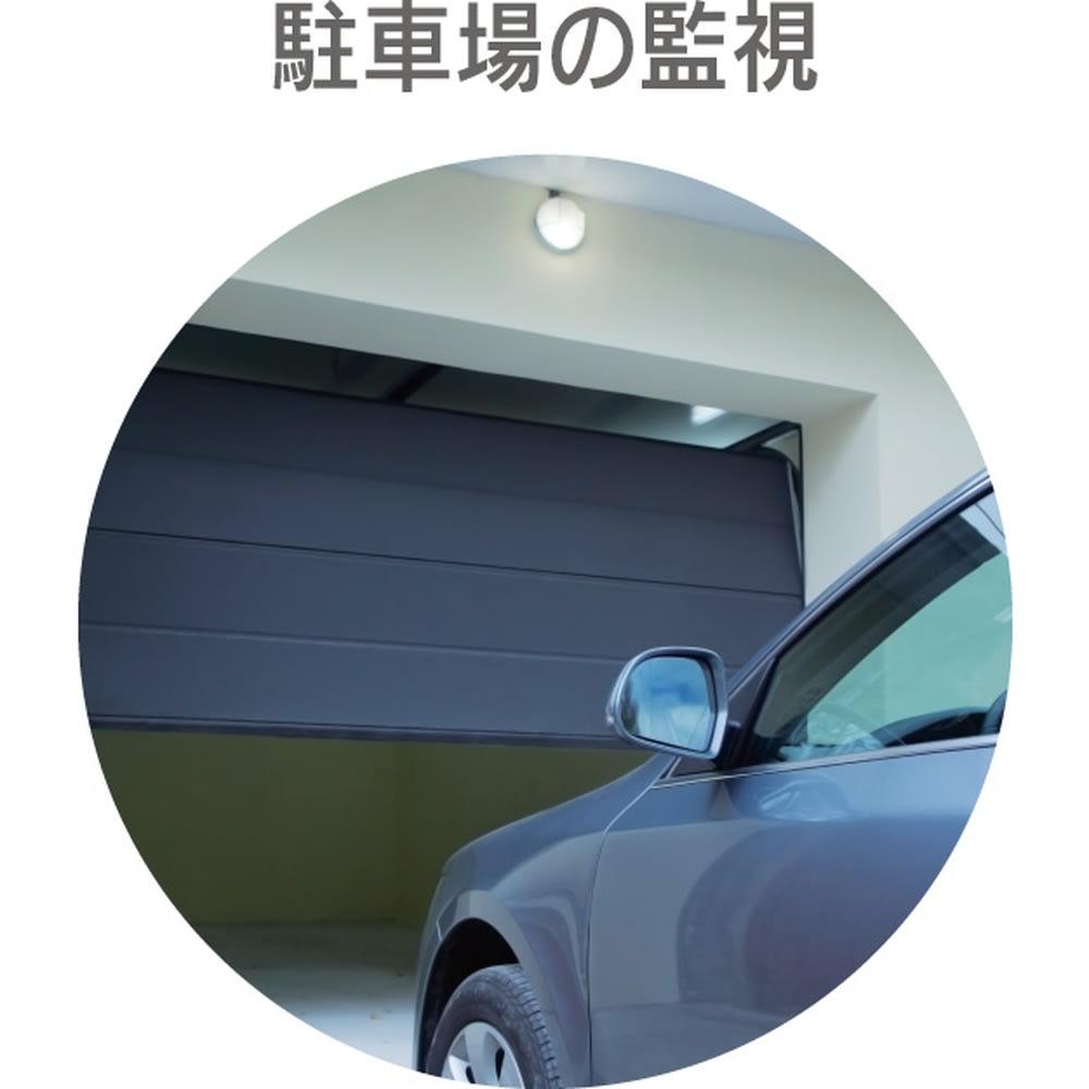 センサーライト一体型防犯カメラ【リーベックス 人感センサー式ライトカメラ microSDHC+電池セット】