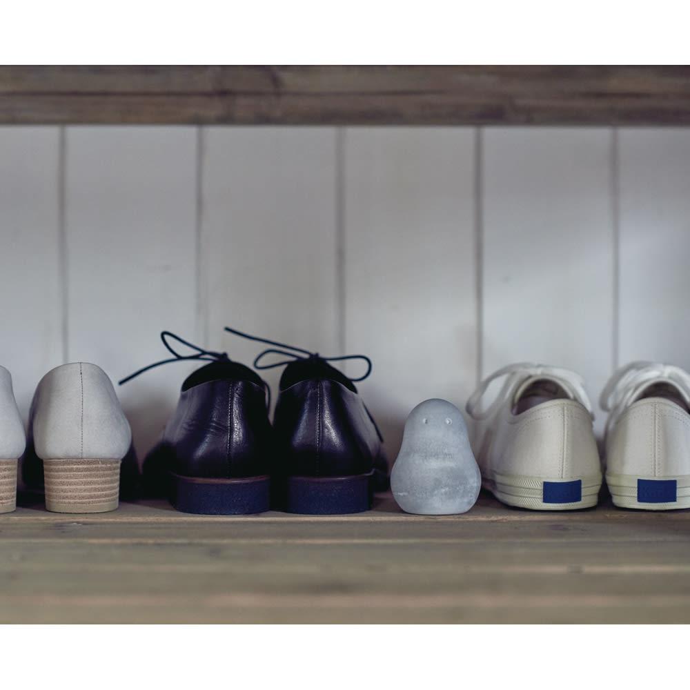 玄関や下駄箱の湿気・臭い対策に! SOIL 調湿脱臭剤 フレッシェン3個セット  臭いや湿気が気になる玄関の下駄箱や棚におすすめ。