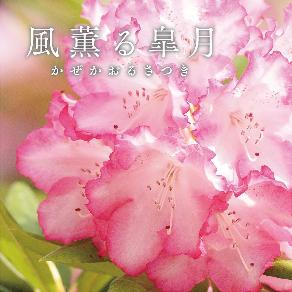 季ノ布 麻のシャリ感 風薫る皐月シリーズ 洗える麻敷きパッド 美しく染め上がるシャクナゲをイメージし、爽やかに風が吹き渡る初夏を表現しています。