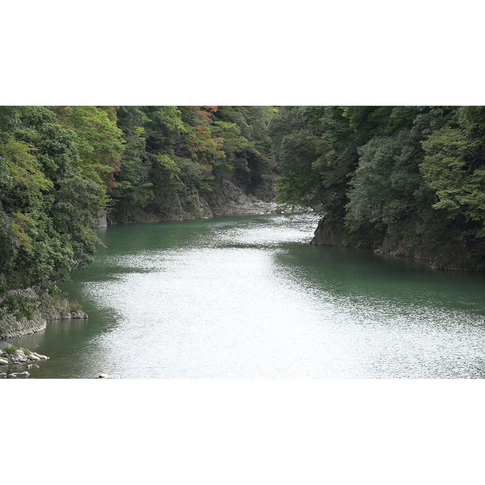 季ノ布 しなやか涼感 風の便り 洗える麻肌掛けふとん シングルサイズ 滋賀近江風景